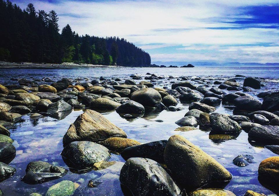 Sombrio Beach near Port Renfrew BC